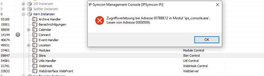 skin_error.PNG