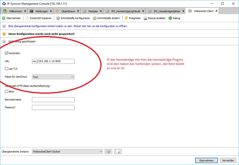 WebsocketClient.png