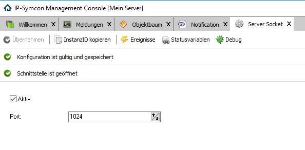 Serversocket.JPG